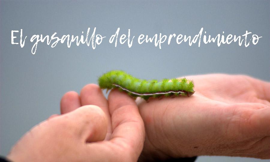 gusano-emprendedor