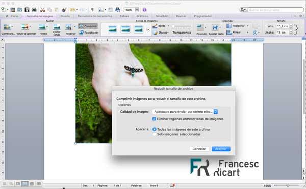 proceso de optimización de imagen web