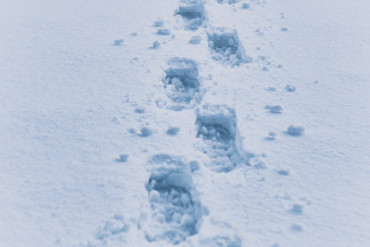 Avances visibles, pequeños pasos 4